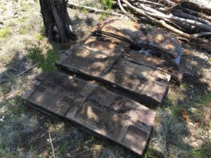 photo of shingles that were 20 years in the woods
