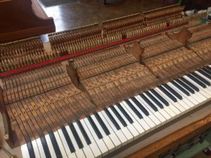 photo of piano action with just keybed and keys