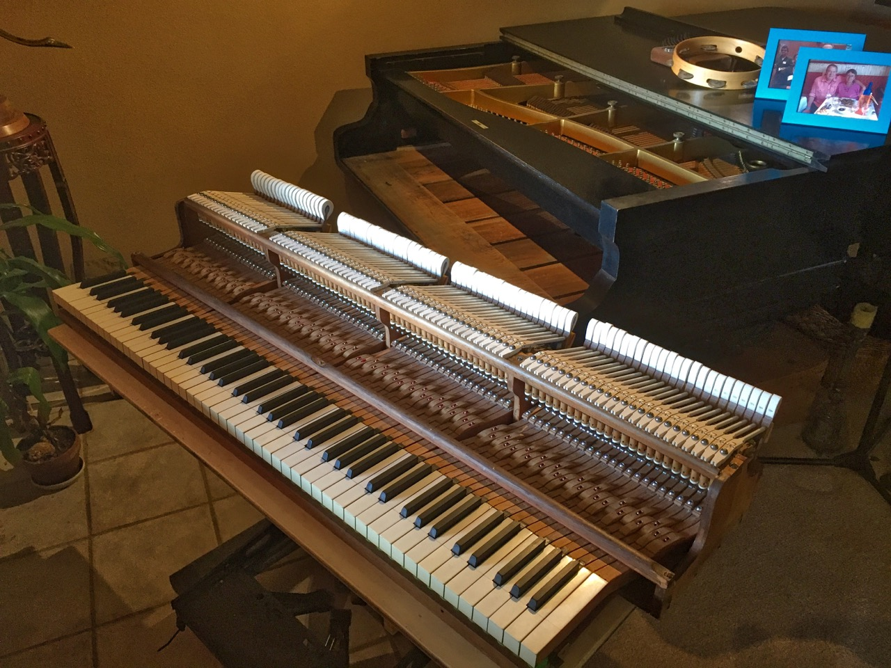 photo of the Action ready to reinstall in the piano